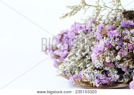 Nature, Spring Or Summer Background Concept : Bouquet Of Dried Wild Flowers On White Background With