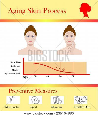 Aging Skin Process And Preventive Tipps, Aged Changes Vector Illustration