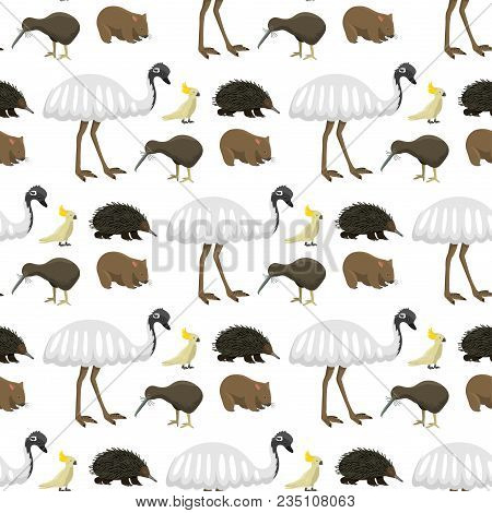 Australia Wild Animals Cartoon Popular Nature Characters Flat Style And Australian Mammal Aussie Nat