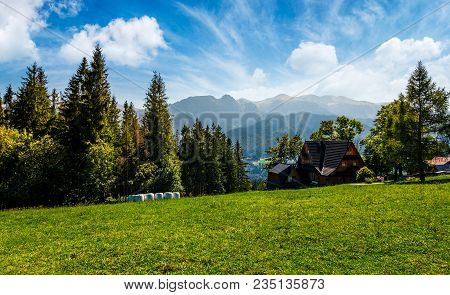 Beautiful Landscape Of Tatra Mountains. Location Zakopane Village, Poland. Lovely Scenery With Fores