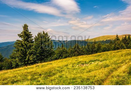 Forested Hills And Meadows Of Svydovets Ridge. Lovely Summer Landscape Of Carpathian Mountains In Af