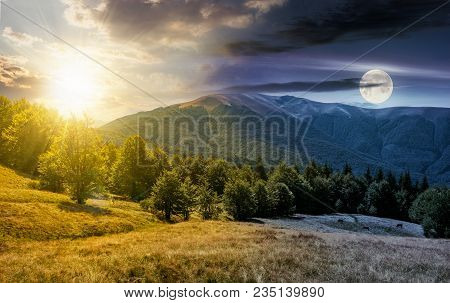 Time Change Concept Over The Beech Forest On Grassy Meadows In Mountains. Beautiful Landscape At The