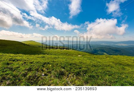Grassy Hillside Meadow In The Morning. Mountain Peak In The Distance Under The Blue Sky With Fast Mo