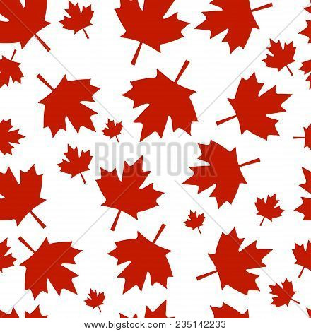 Vector Pattern From Maple Leaves. Red Maple Leaves On A White Background. A Background By Day Of Can