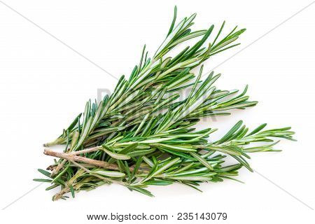 Isolated Rosemary Herb. Fresh Green Rosemary Bunch Isolated On A White Background. Top View. Flat La