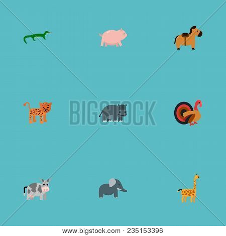 Set Of Zoo Icons Flat Style Symbols With Horse, Leopard, Elephant And Other Icons For Your Web Mobil