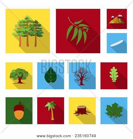 Forest And Nature Flat Icons In Set Collection For Design. Forest Life Vector Symbol Stock  Illustra