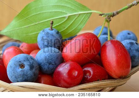 Close Up View Of Curative And Healthy Cornelian Cherries And Blackthorn Berries In A Wicker Basket