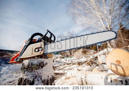 Chainsaw. The Sawmill, Felled Trees Lie In Sawdust. Chainsaw Is On Top Of Tree.