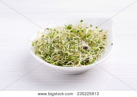 Mix Of Food Sprouts - Alfalfa, Radish, Clover In A Bowl. Micro Greens On White. Healthy Eating.
