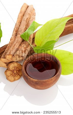 Ayahuasca Medicine. Banisteriopsis Caapi Wood, Psychotria Leaves And Ayahuasca Brew In Wooden Bowl I