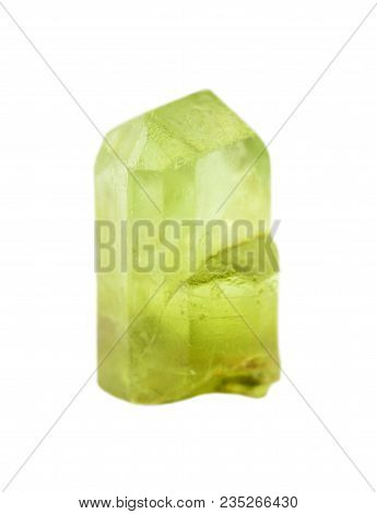 Gemstone chrysolite. Collection specimen of a green peridot mineral isolated on a white background poster