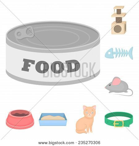 An Animal Cat Cartoon Icons In Set Collection For Design. Caring For A Cat Vector Symbol Stock  Illu