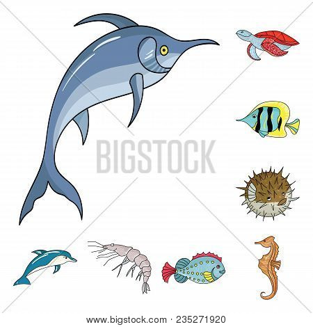 A Variety Of Marine Animals Cartoon Icons In Set Collection For Design. Fish And Shellfish Vector Sy
