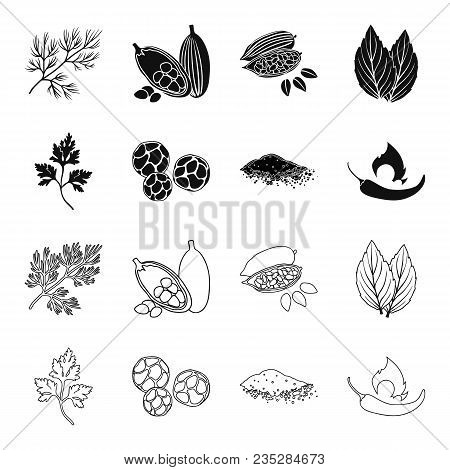 Ptrushka, Black Pepper, Paprika, Chili.herbs And Spices Set Collection Icons In Black, Outline Style