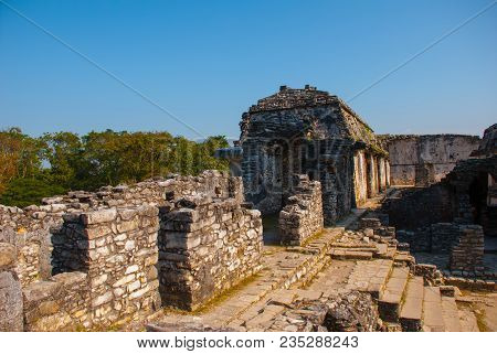 Palenque-the Remains Of An Ancient Mayan Civilization, Well-preserved In The Selva Of The Southern S