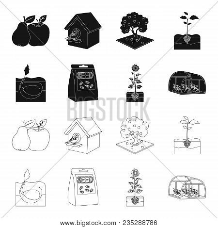 Company, Ecology, And Other  Icon In Black, Outline Style. Husks, Fines, Garden Icons In Set Collect