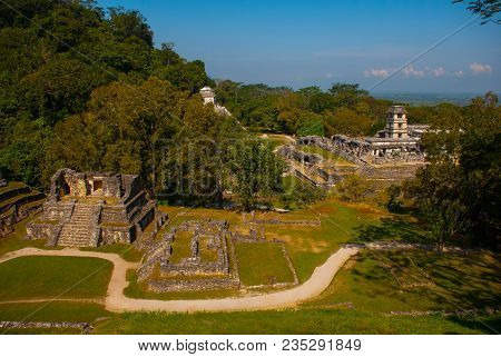 Top View Of The Jungle And The Ancient Mayan City. The Famous Archaeological Complex. Mayan Ruins In