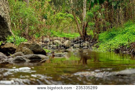 Landscape Of Gran Canaria, Ravine Of Valsequillo With Rain Water, Canary Islands