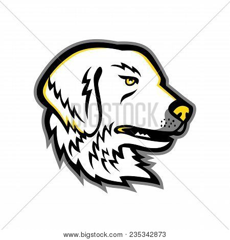 Mascot Icon Illustration Of Head Of A Great Pyrenees Or Pyrenean Mountain Dog, A Large Breed Of Dog