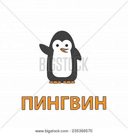 Cartoon Penguin Flashcard. Vector Illustration For Children Education With Penguin Text In Russian L
