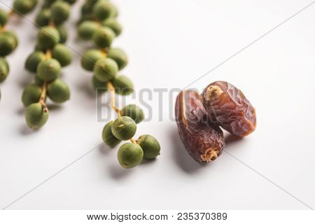 Bunch of tender, green dates placed along with rippen sweet date fruits. Best quality Saudi dates samples from the wadi. Studio shot on white background.