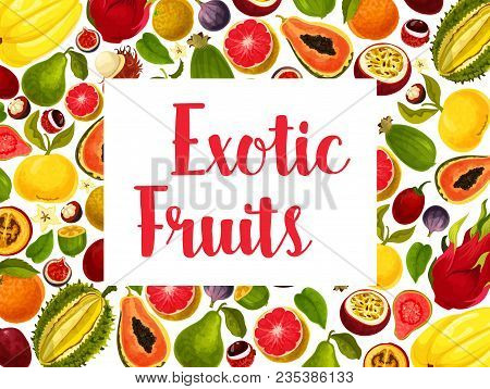 Exotic Fruit Poster With Frame Of Fresh Tropical Fruits. Orange, Papaya And Mango, Durian, Feijoa An