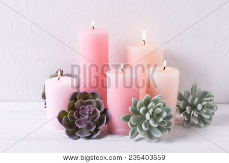 Pink Color Diffenent  Burning Candles  And Succulent Echeveria On White Textured Background.selectiv