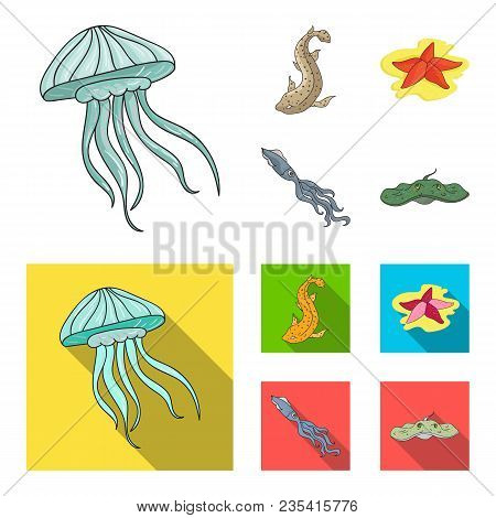 Jellyfish, Squid And Other Species.sea Animals Set Collection Icons In Cartoon, Flat Style Vector Sy
