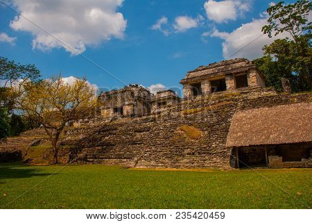 Chiapas, Mexico. Palenque. The Ruins Of The Great City Of Maya In The North-east Of The Mexican Stat
