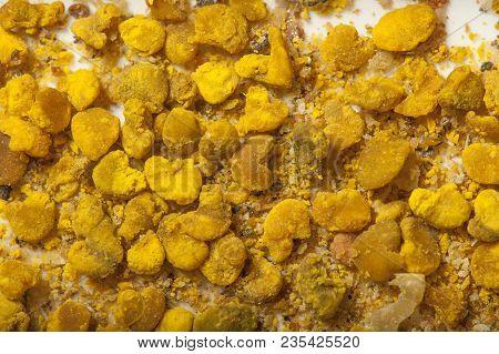 pollen loads - macro photo of bee pollen - perga (bee bread)