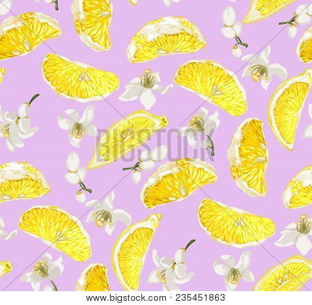 Cute Seamless Pattern With Lemon Citrus Fruit Slices And Blooming Citrus Flowers On The Pink Backgro