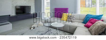 Designer Colorful Living Room