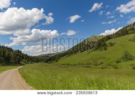 Lush, Green Summer Landscape With Bright Blue Sky In Remote Area Of Highwood, Montana, Usa.