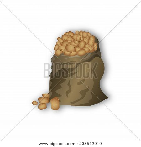 Potato Bag, Potato In Tubers, Agriculture, Home Grown Vegetables, French Fries, Vector Illustration