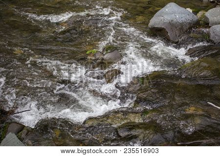 Freshwater Creek In Remote Mountain Forest Area.