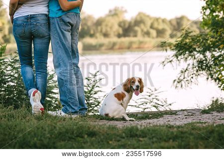 A Pair Of Lovers In Jeans Hugs On The River Bank On A Sunny Day, Next To A Dog