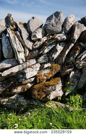 Typical Irish Stone Fence Detail, Green Grassy Field