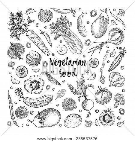 Vegetarian Food. Vegetable Hand Drawn Vintage Vector Illustration. Farm Market Poster. Healthy Life.