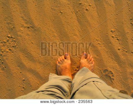 Walking On The Desert