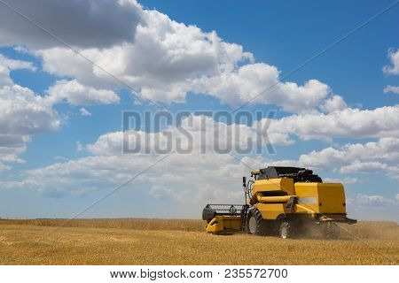 Harvesting Machine Cuts Wheat In The Field, Harvester Is Working, Harvesting, The General Plan Of Sh