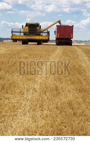 Harvesting, The Combine Pours Grain Into A Large Machine, A Harvesting Machine On An Agricultural La