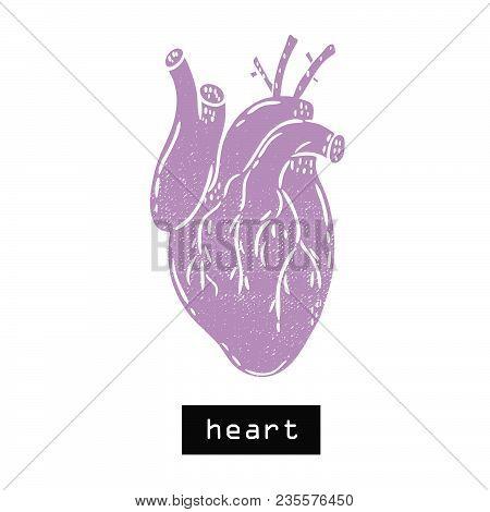 Vector Hand Drawn Illustration. Heart Body. Idea For Poster, Postcard, Design.