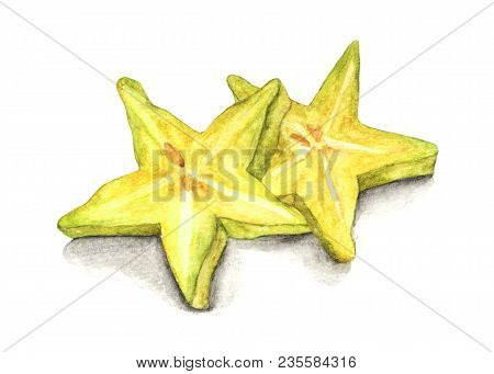 Watercolor Hand Drawn Fresh Yellow Fruit Carambola. Isolated Organic Natural Eco Illustration On Whi