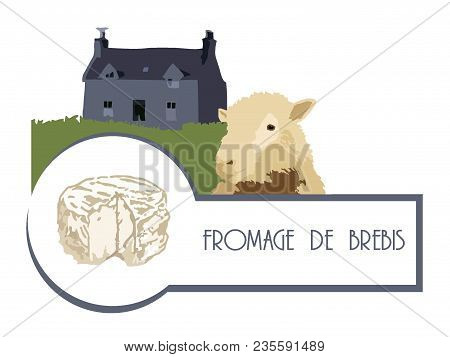 Vector Image Sheep On The Background Of An Old French House With A Lawn And Sheep Cheese