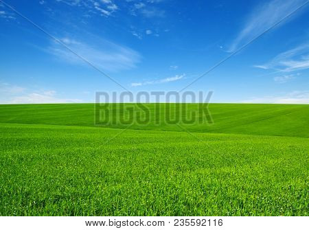 Green grass field on hills and blue sky with clouds