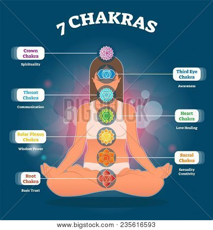 7 Chakra Meanings, Vector Illustration Diagram With Woman Sitting In Lotus Pose. All Chakra Colors A