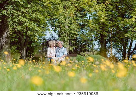 Romantic senior couple in love sitting together on a bench while dating outdoors in an idyllic park in summer