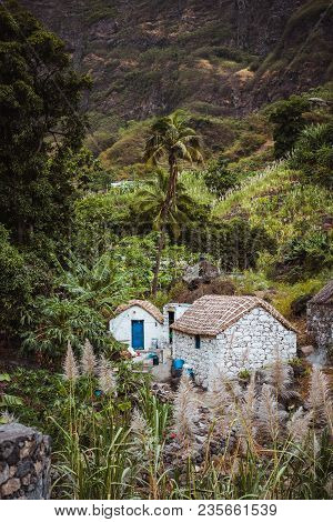 Stone Houses In Local Style With Straw Covered Roofs And Blue Windows Between Lush Green Vegetation