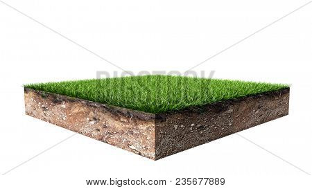 Green Square Grass Land Piece Isolated on White Background. 3D Illustration.